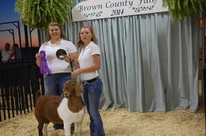 14-Grand-Champion-Doe-Brown-County-Fair-Madeline-Moran