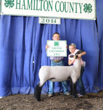 14-Grand-Champion-Ewe-Hamilton-County-4H-Show-Bailey-Slaton