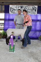 14-Grand-Champion-Ewe-Kankakee-County-Fair-Brooke-Haag