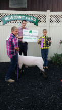 14-Grand-Champion-Ewe-Wells-County-4-H-Fair-William-Ball