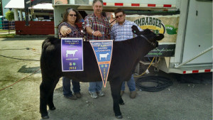 14-Grand-Champion-Feeder-Heifer-Cabell-County-Zachary-Call