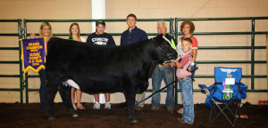 14-Grand-Champion-Heifer-Boone-County-4H-Fair-Kaden-Bennington