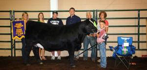 14-Grand-Champion-Heifer-Boone-County-4H-Fair-Kaden-Bennington