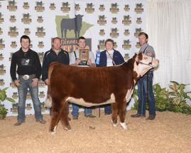 14-Grand-Champion-Hereford-Heifer-Minnesota-Beefo-Expo-Spencer-baker