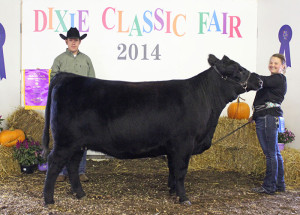 14-Grand-Champion-Jr-Angus-Heifer-Dixie-Classic-Fair-Brooke-Harward