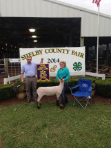 14-Grand-Champion-Lamb-Shelby-County-Fair-Kennedy-Lawson