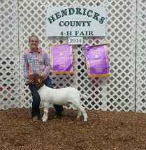 14-Grand-Champion-Market-Goat-&-Supreme-Wether-Overall—Hendricks-County-4H-Show-Shelby-Mathis