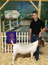 14-Grand-Champion-Market-Goat-Venango-County-Fair-Kolton-Mayer