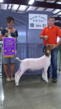 14-Grand-Champion-Market-Goat-Wayne-County-Fair-Zack-Bowman