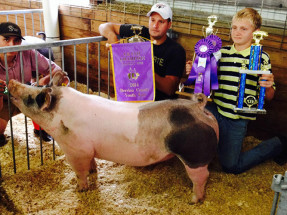 14-Grand-Champion-Market-Hog-Berrien-County-Youth-Fair-Jordan-Williams