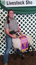 14-Grand-Champion-Market-Lamb-Breckinridge-County-Fair-Madison-Jeffries