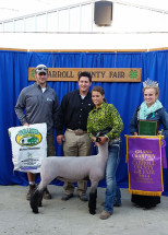 14-Grand-Champion-Market-Lamb-Carroll-County-4H-Fair-Danielle-Swayze
