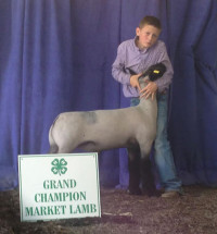 14-Grand-Champion-Market-Lamb-Hamilton-County-4-H-Show-Lane-Slaton