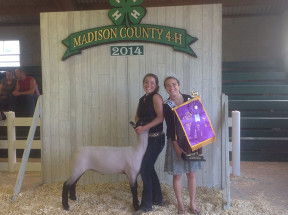 14-Grand-Champion-Market-Lamb-Madison-County-Fair-Faith-Kitts