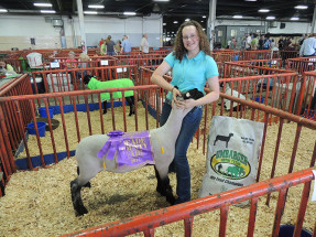 14-Grand-Champion-Market-Lamb-Meade-County-Fair-Alicia-Lee