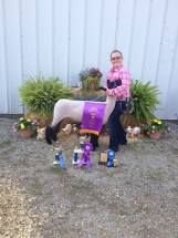 14-Grand-Champion-Market-Lamb-Pike-County-Fair-Olivia-Southworth