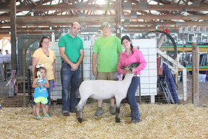 14-Grand-Champion-Market-Lamb-Warrick-County-Fair-Makayla-Williams