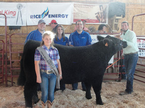 14-Grand-Champion-Market-Steer-Belmont-County-Fair,-OH-Eric-Dunfee