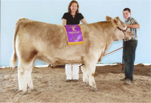 14-Grand-Champion-Market-Steer-Chautauqua-County-4-H-Fair-Michael-Kibbe
