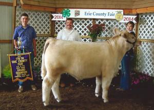 14-Grand-Champion-Market-Steer-Erie-County-4H-Libby-Kelkenberg