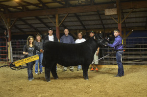 14-Grand-Champion-Market-Steer-Jefferson-County-Show-Branden-DeFreank