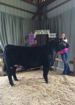 14-Grand-Champion-Market-Steer-Niagara-County-4H-Show–Elzabeth-Luckman