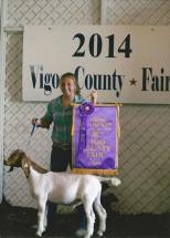 14-Grand-Champion-Meat-Wether-Vigo-County-4H-Fair-Sarah-Wyrick
