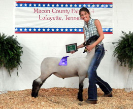 14-Grand-Champion-Overall—Macon-County-Fair-Jade-Ellis