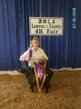 14-Grand-Champion-Pygmy-Doe-Lawrence-County-4H-Fair-Jesse-Prince
