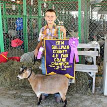 14-Grand-Champion-Pygmy-Doe-Syllivan-County-Fair-Grant-Bell
