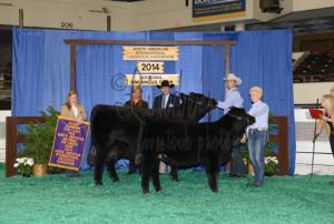 14-Grand-Champion-Sim-Angus-Cow-Calf-Pai-NAILE-Tyler-Adcock