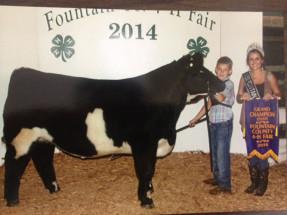 14-Grand-Champion-Steer-Fountain-County-4H-Fair-Seth-Martin
