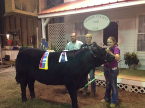 14-Grand-Champion-Steer—Green-County-Fair—Julie-Policz