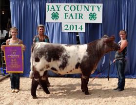 14-Grand-Champion-Steer-Jay-County-4H-Fair-Jamie-Valentine