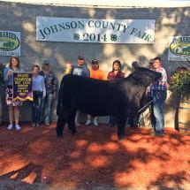 14-Grand-Champion-Steer-Johnson-County-Fair-Austin-Porter