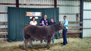 14-Grand-Champion-Steer-Logan-County-Fair-Matt-Short