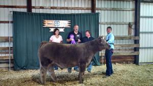 14-Grand-Champion-Steer-Logan-County-Fair-Matt-Short