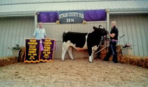 14-Grand-Champion-Steer-Putnam-County-4H-Fair-Mackenzie-Taylor