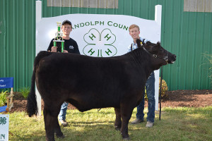 14-Grand-Champion-Steer-Randolph-County-Beef-Show-Jentry-Flesher