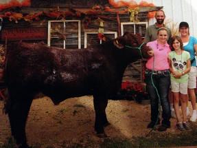 14-Grand-Champion-Steer-Saginaw-County-Fair-Emma-Strouse