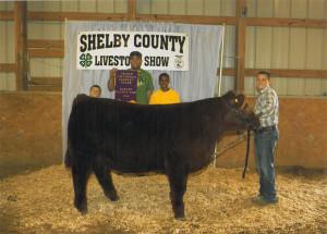 14-Grand-Champion-Steer–Shelby-County-Livestock-Show-Kolton-Raizor