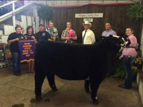14-Grand-Champion-Steer-Wayne-County-Fair-Brooke-Hayhurst