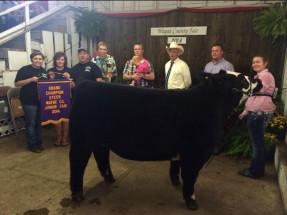 14-Grand-Champion-Steer-Wayne-County-Fair-Brooke-Hayhurst