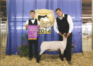 14-Grand-Champion-Wether-Dam-Ozark-Empire-Gold-Buckle-Gala-Jesse-Mackeprang