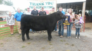 14-Grand-and-Reserve-Grand-Champion-Steer–Van-Wert-County-Fair-Austin-Sorgen