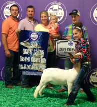14-Great-Lakes-Champion-Full-Blood-Michigan-Livestock-Expo-Karlee-Shiery