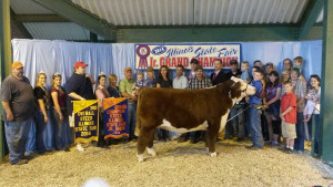 14-Land-of-Lincoln-Grand-Champion-Steer–Illinois-State-Fair-Braden-Musgrave