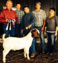 14-Overall-Champion-Boer-Buck-Maryland-State-Fair-Dashea-Lankey