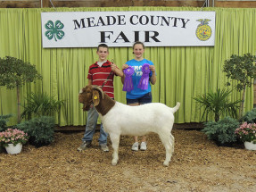 14-Overall-Champion-Buck-Meade-County-Fair-Alex-Lee