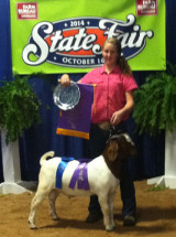 14-Overall-Grand-Champion-Jr-Buck-Breeder-North-Carolina-State-Fair-Stacie-WINNER
